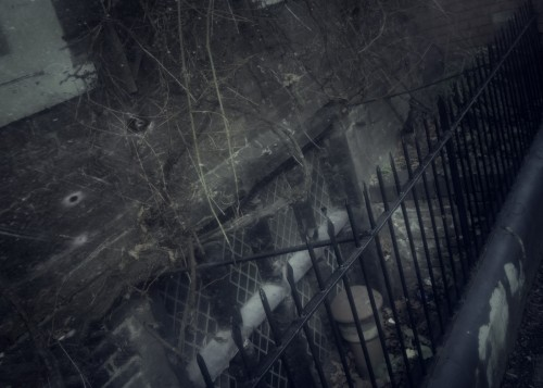 House of Horror - FX